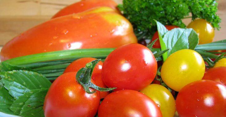 Unterschiedliche Tomatensorten