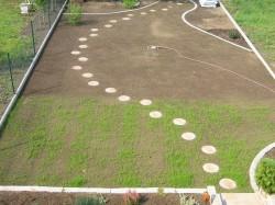Der erste Rasen im Garten